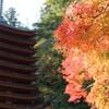 十三重の塔がある『談山神社』を参拝してみた in奈良