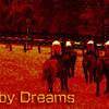 ヤマノリュウセイ号がダービーを勝つ夢