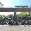 【春の散策2017】新緑の高幡不動から多摩動物公園に行ってきました(その2動物園編)