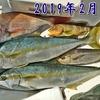 2019年の釣果 【  日本海 / ボートフィッシング  】