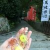 奈良旅行②〜どうにかならないことはないはずだけど、どうもできないもどかしさがあった~