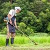 草刈り 和歌山市