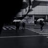 458  春の雨