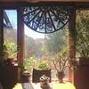 1年2ヶ月ぶりのニューメキシコ 番外篇:創造楽園の内部❶