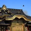 関東の金ピカ神社巡り〜♫  フツヌシ様はどなた様?