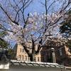 SSK (SunnySide of Kyoto)(+721/1086)