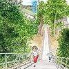 海街diary 8巻 恋と巡礼