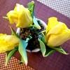 個人的な風物詩、黄色いチューリップをテーブルに