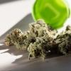 ウーマン村本「大麻合法化しようぜ」ツイートに、賛否両論のリプライが