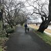 Fukushima50を思い出しながら見回りに行きました。ただちに健康に影響はありません