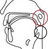 鼻と咽喉の間(上咽頭)が痛い人へ ホットシャワー