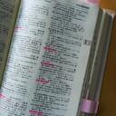 自分流スペイン語勉強方法