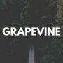 GRAPEVINEのオススメ・人気曲《5選》