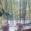 【宮城旅行ブログ】仙台で行くべきカフェ・グルメ・絶景8選【観光旅行・大人の休日にもおすすめ】