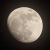 月 《月齢 12.5》