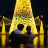 環水公園のライトアップファンタジー