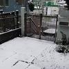 コロナと雪とタイヤ交換と