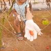 The Farm(ザファーム)で初めてのグランピング(5歳、2歳子連れ)本当に手ぶらでOK?② 野菜収穫体験で新鮮なお野菜ゲット!種類豊富で楽しい~