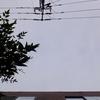 作曲工房 朝の天気 2018-09-20(木)くもり