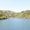 池(ダム)釣りにチャレンジ!初心者のための子供と一緒に始めるフナ釣り。in兵庫県大杉ダム