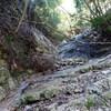 船坂谷から清水谷へのハイキング(その2)船坂谷中盤