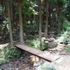山を歩いて森カフェへ