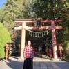 天河神社、みたらい渓谷、せせらぎの宿 弥仙館