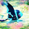 #505 『New ポケモンスナップ』プレイ日記vol.1 とりあえずストーリークリアと全エリア解放【ゲーム】