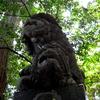【神が降り立ったパワースポット 高千穂】 高千穂神社・天の岩戸神社・高千穂峡