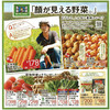 企画 商品 顔が見える野菜 イトーヨーカドー 9月8日号
