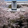 愛宕神社~岩間駅(吾国山・愛宕山ハイキング5)