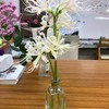 花をかざろう