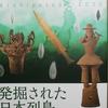 発掘された日本列島 新発見考古速報 2020