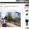 Hatena Blog ファイル利用量!