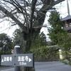 世界遺産 法隆寺辺りの散策(続き) (奈良)