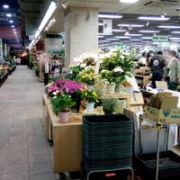 サカタのタネ【ガーデンセンター】横浜