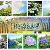 紫陽花の名所✾桃源郷岬は珍しいもの不思議なもの沢山