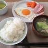 11/4 東京 晴れ