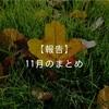 【報告】11月のまとめ!