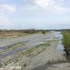 多摩川右岸を歩く その3 日野市浅川合流点から多摩橋