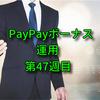 【長期積立】PayPayボーナス運用・週報・第47週目・チャレンジコースへ自動追加でもうすぐ1年