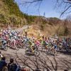 🎌J pro tour #4 東日本 road classic