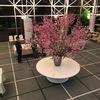 2018.04.09 しごとでお花見