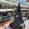 クリスマスinヒューストン♡