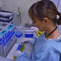 大人の科学(6)PCRとは何か