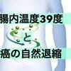 「腸内温度39度」キープと、癌の「自然退縮」について。 <乳がんブログVol.170>