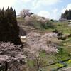 岡山・美作地方 桜の旅(その2)