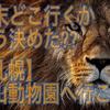 みんなで【札幌】円山動物園にゾウさんをみに行こう!!