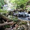 宍粟市の滝めぐり(その6)白龍の滝