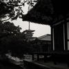 龍王社付近から見た薬師寺西塔
